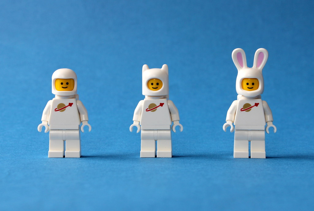 Rabbit Space Evolution