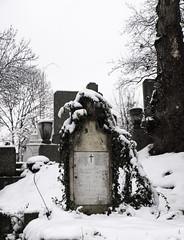 Cementerio Central.Cluj-Napoca.Rumanía