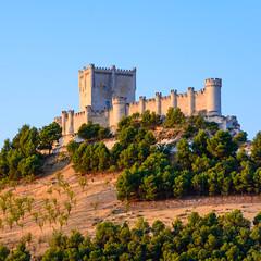 Ruta del Río Duero. Castillo de Peñafiel