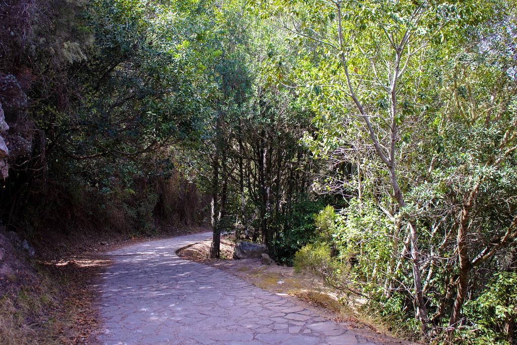 Camino hacia los Chorros de Epina