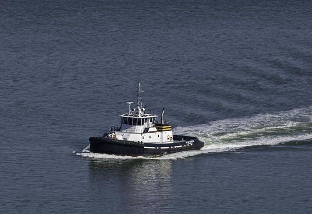 Tug in the Bay