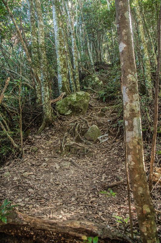 哈堪尼山乾燥土石稜線 (2)