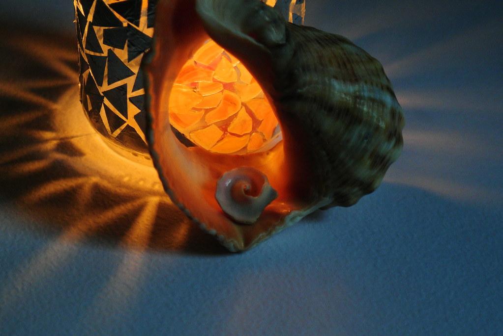 Light inside my broken shells