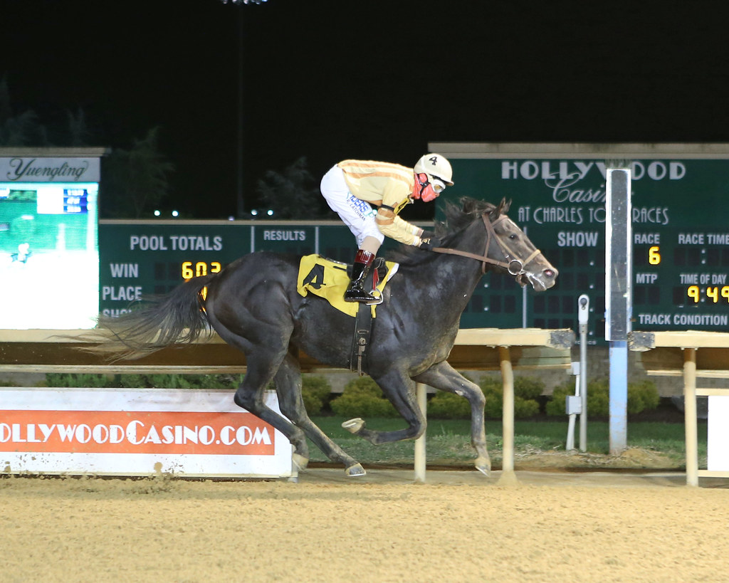 Delight for Keane and Weld with $4 million Breeders' Cup Turf triumph