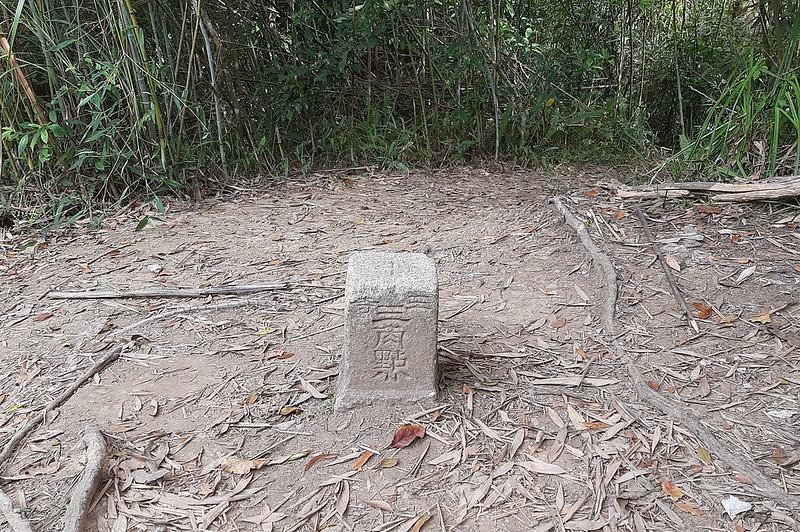 猿山三等三角點(# 122 Elev. 463 m) (2)