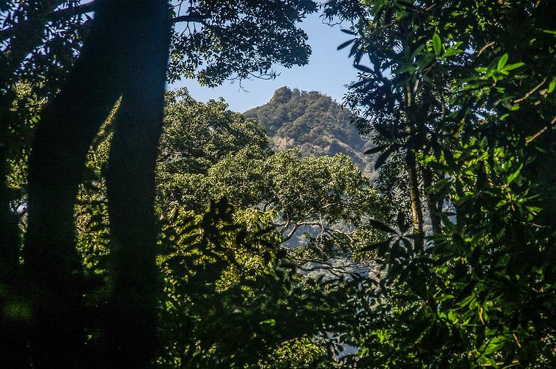 哈堪尼山稜線(H 1890 m)西南望加里山