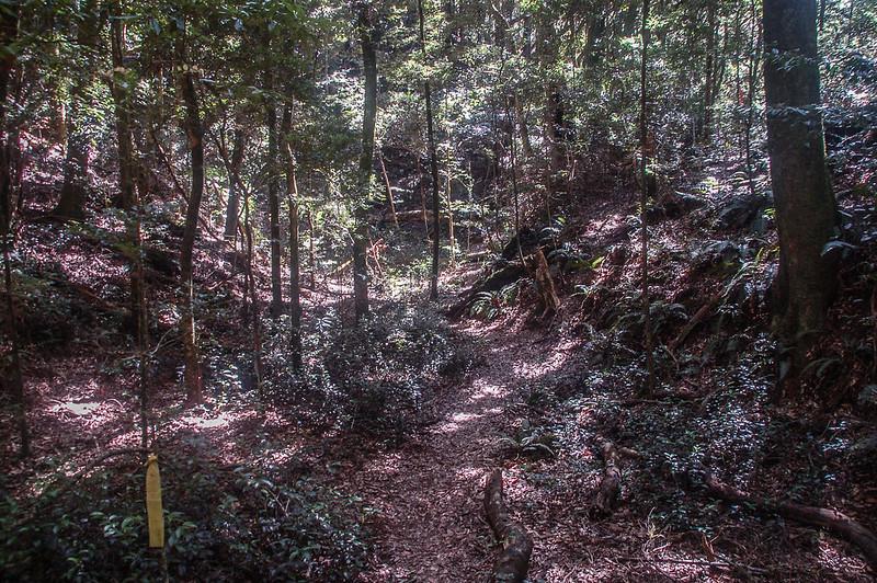 哈堪尼山山徑低窪山溝地形