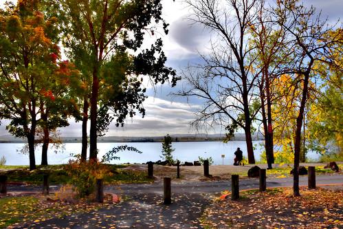 wintlercommunitypark columbiariver vancouver washingtonstate washington westcoast park trees fall autumn usa water landscape