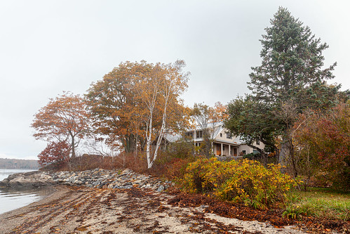 harpswell maine fog lookoutpoint autumn leafcolor