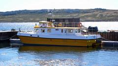 FALKLAND ISLANDS - 79 Passenger boat, Stanley harbour