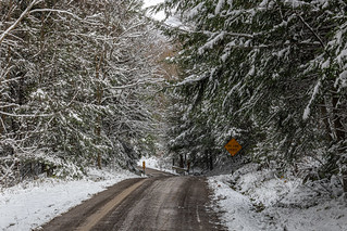 potters falls road snow 2 2020_11_02 | by cupprof