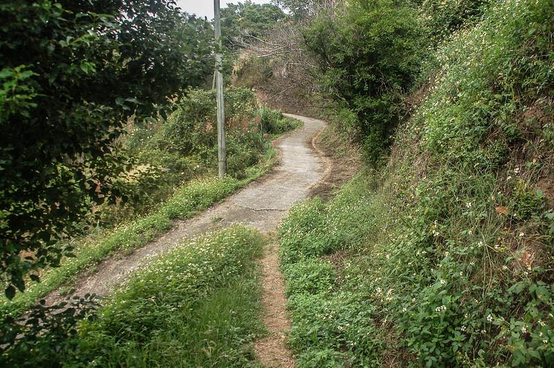 猿山、獅頭山山徑果園岔路