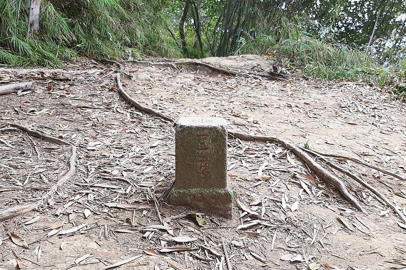 猿山三等三角點(# 122 Elev. 463 m) (1)
