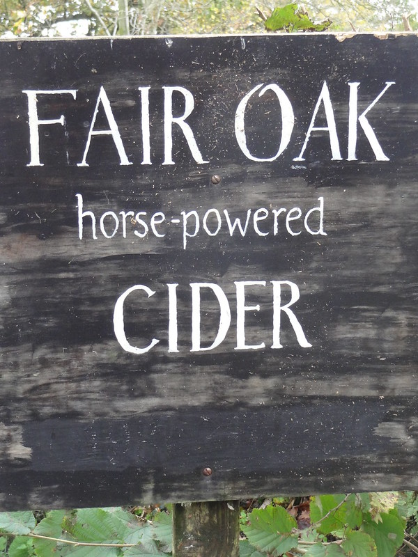 Morning walk: Fair Oak Horse-Powered Cider
