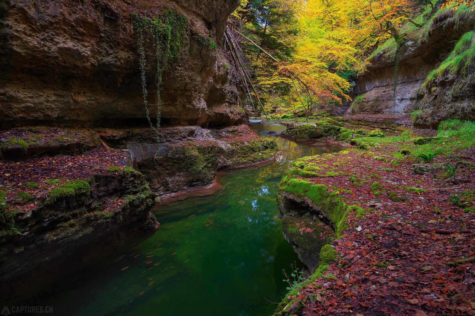 Colored river - Orbe