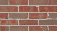 Belcrest 550 Sandmold Texture red Brick