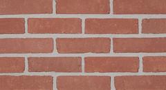 Belcrest 100 Sandmold Texture pink Brick
