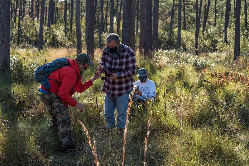 Field trippers in the Longleaf Pine savannah discussing things botanical