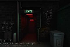 TROPIX // Corner of Pleasure Backdrop
