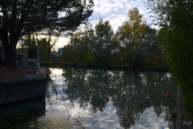 Les arbres, le ciel et les reflets