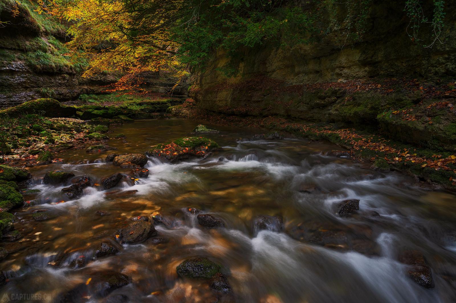 River stream - Orbe