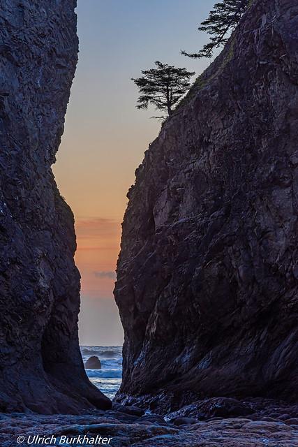 Rocks on Rialto Beach, WA