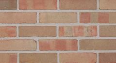 Belcrest 360 Sandmold Texture pink Brick