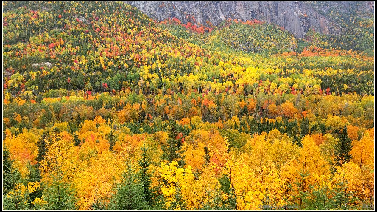 豪华露营秋游魁北克1:马尔拜河谷国家公园绝美秋色