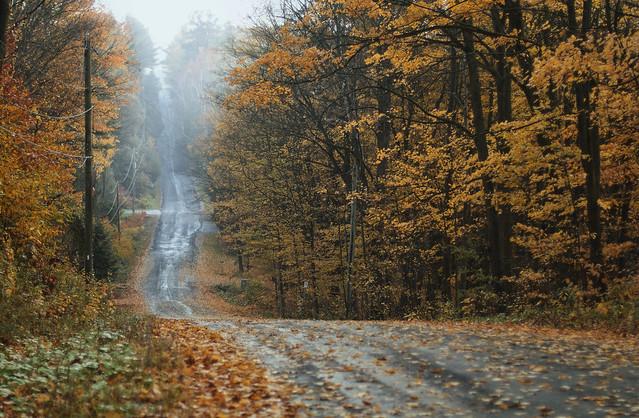 lovely road