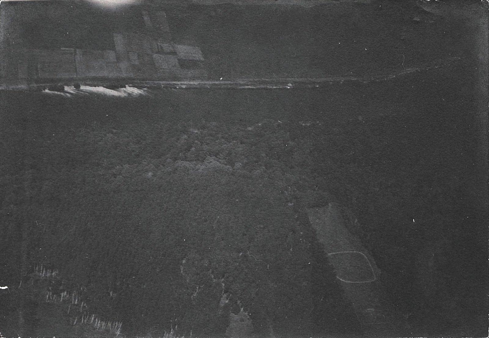 1916. Вид берега Западной Двины (12)