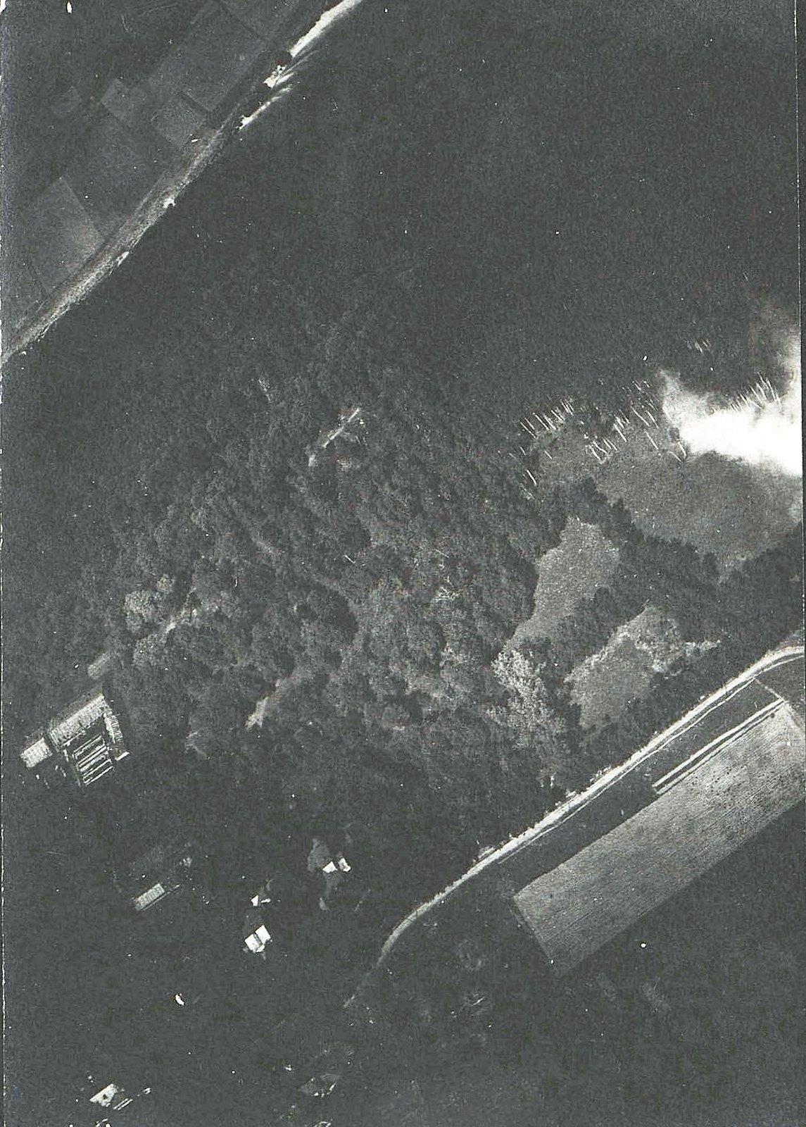 1916. Вид берега Западной Двины (11)