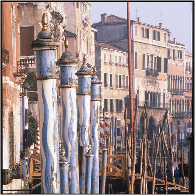 Paline Veneziane al Canale Grande_1981