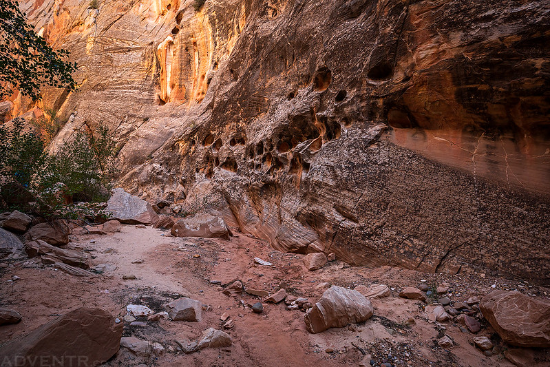 Canyon Wall