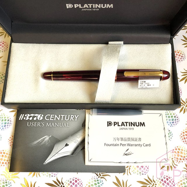 Platinum #3776 Century Bourgogne Coarse Juicy Big Nib Fountain Pen 2