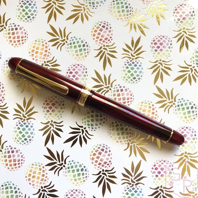 Platinum #3776 Century Bourgogne Coarse Juicy Big Nib Fountain Pen 3
