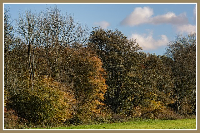 Autumn in the countryside 1.