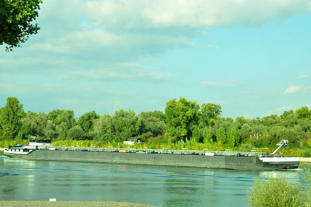 November 2020 ... Mit der Kollerfähre über den Rhein ... Brigitte Stolle