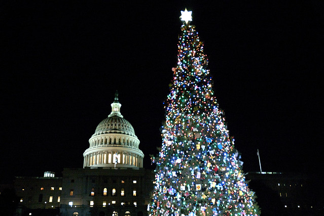 50 Years of Christmas Cheer as a New Tree is Cut for Capitol Hill