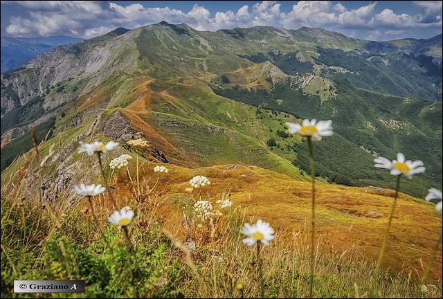 Ridges in Appennino