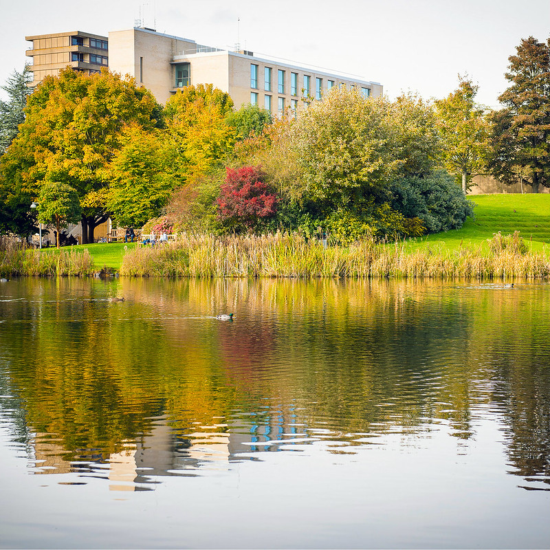 View of the lake on campus with buildings in the background