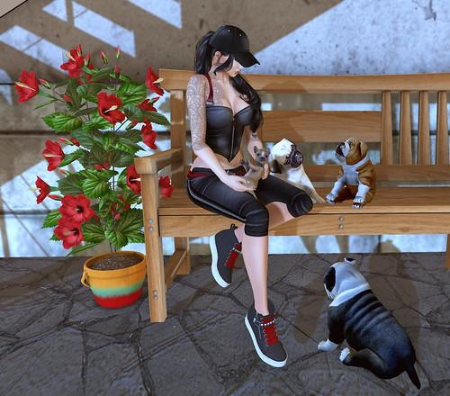 Brandy's Boutique - Puppy Love