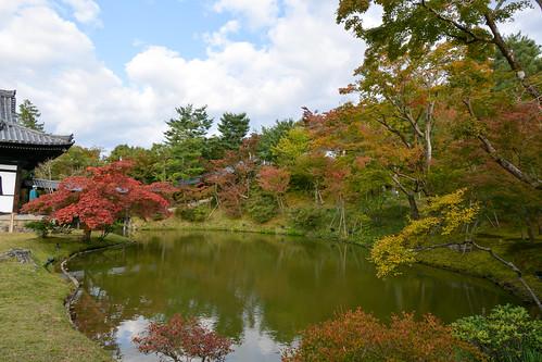Kyoto 高台寺
