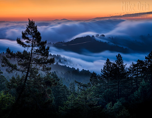 california marin sausalito mounttam tam tamalpais ridgecrest panoramichighway fog stream morning dawn sunrise pentax 645 645z panorama pano