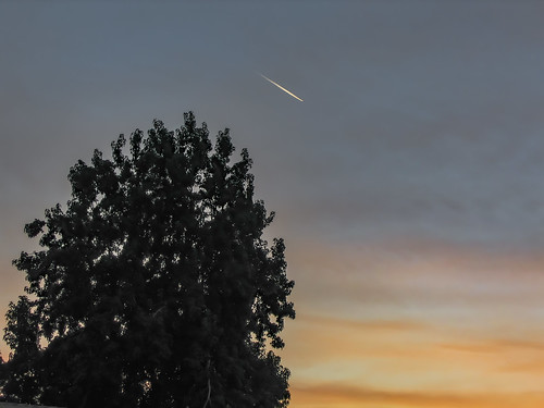 america bakersfield california kerncounty platocourt platoct usa unitedstates airplane cloud contrail jfflickr photosbydavid plant postedonflickr sky sunset tree
