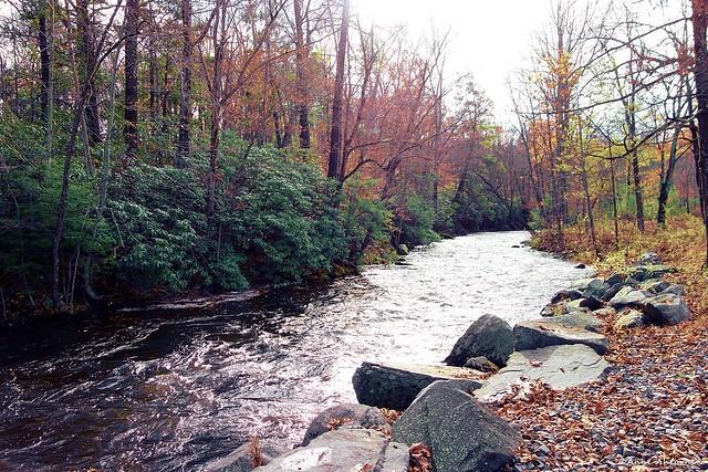 Pocono Creek