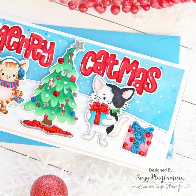 merry catmus close up 1