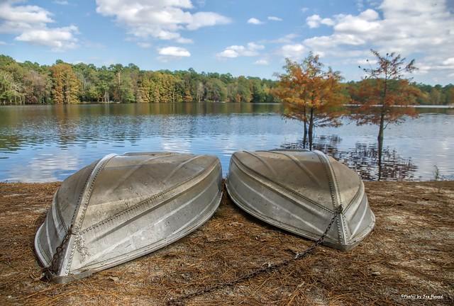 Fall at Trap Pond....Explored 11-05-2020