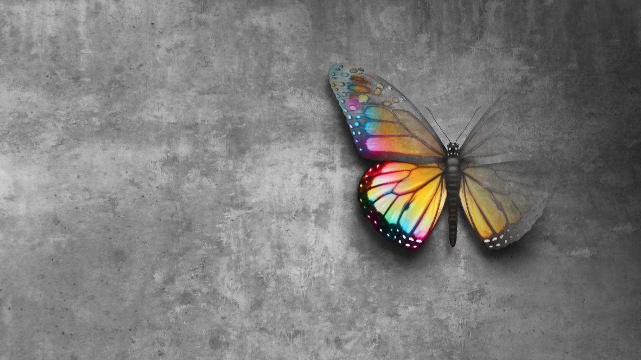 A colourful butterfly fading into dust