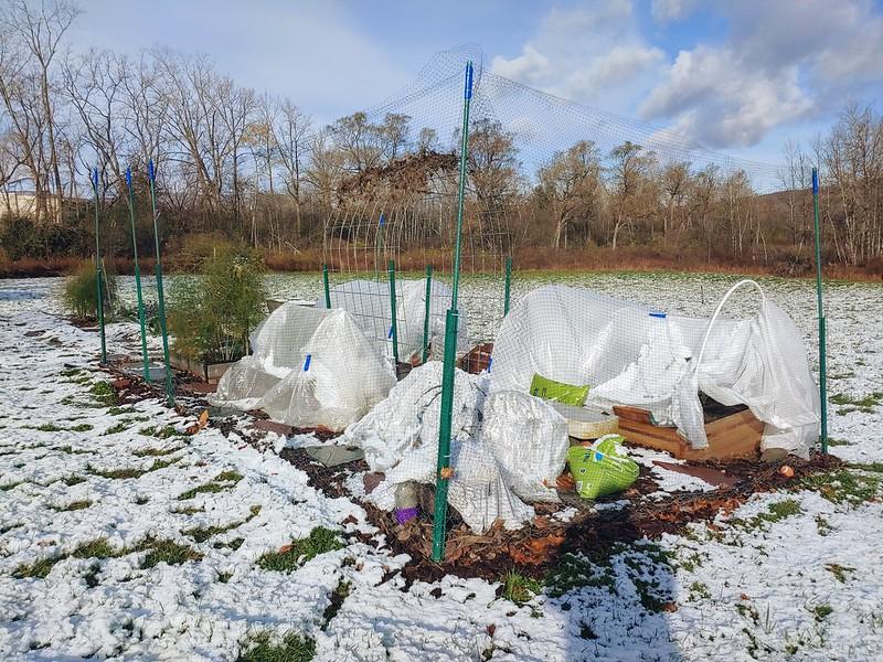 Prepping the Vegetable Garden for Winter