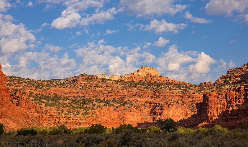 Paria Canyon View